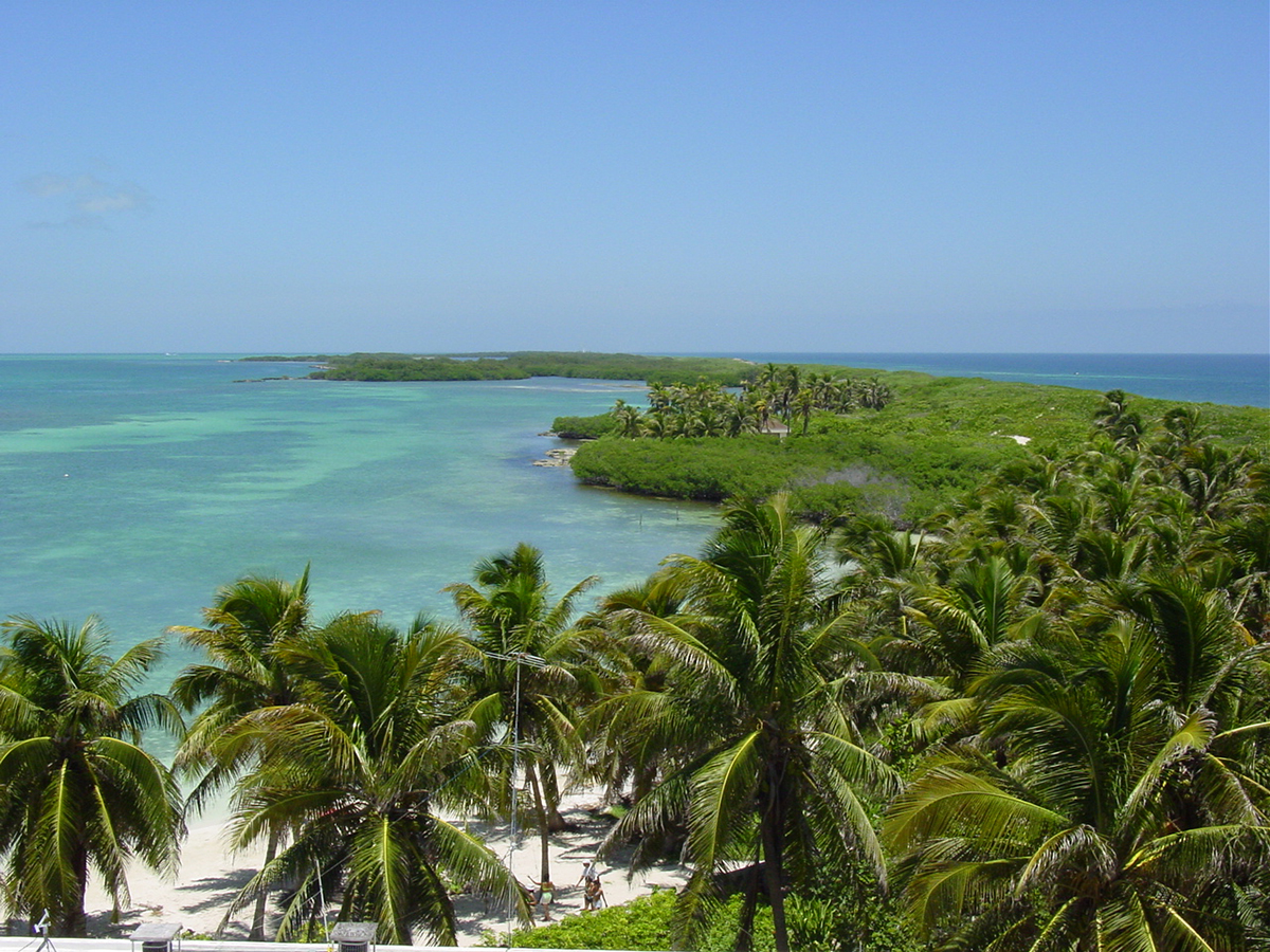 What's Special about Isla Contoy Near Cancun?
