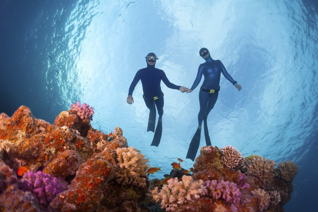 Diving certification in Mexico