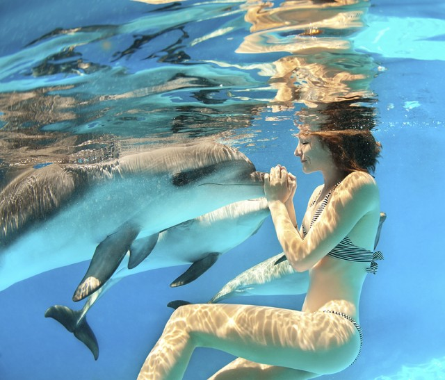 What to expect when you swim with dolphins in Cancun