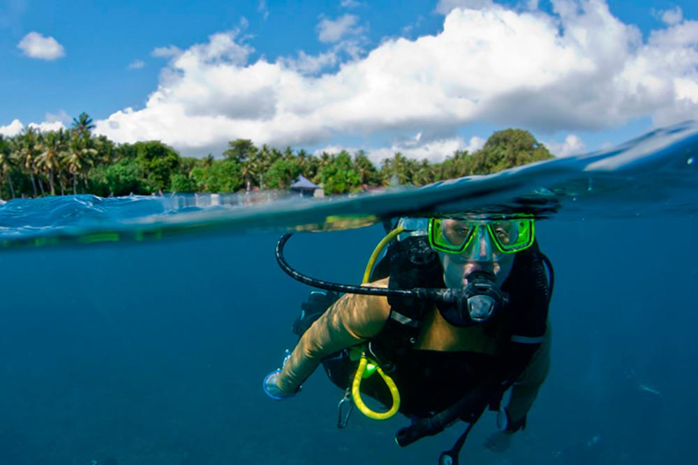 Paradise Diving Adventure