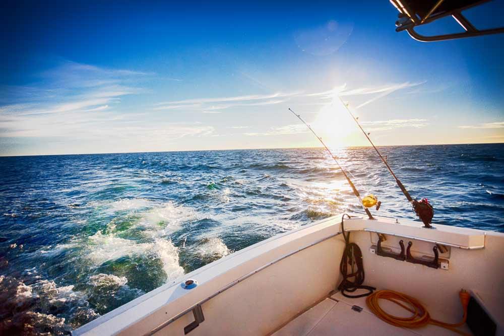 Fishing tours in cancun for Fishing in cancun