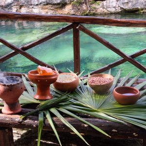 What did the Ancient Mayans Eat?