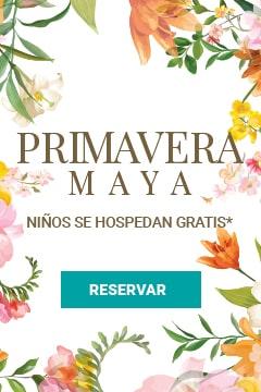 Venta de Primavera Villa del Palmar Cancún