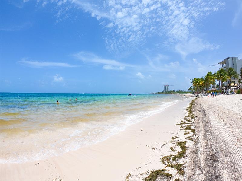 Sargassum free beach at Villa del Palmar Cancún