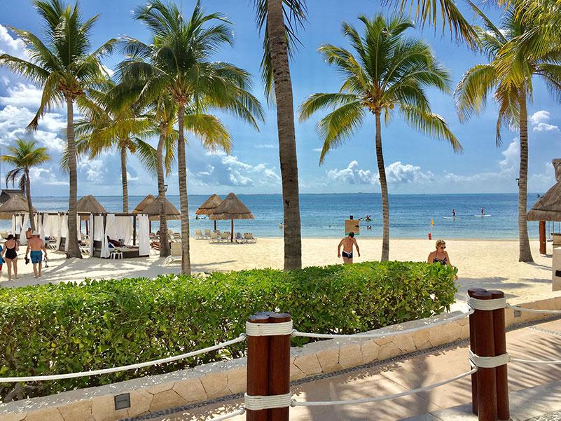 Sargassum monitoring: Cancun beaches without sargassum | Blog