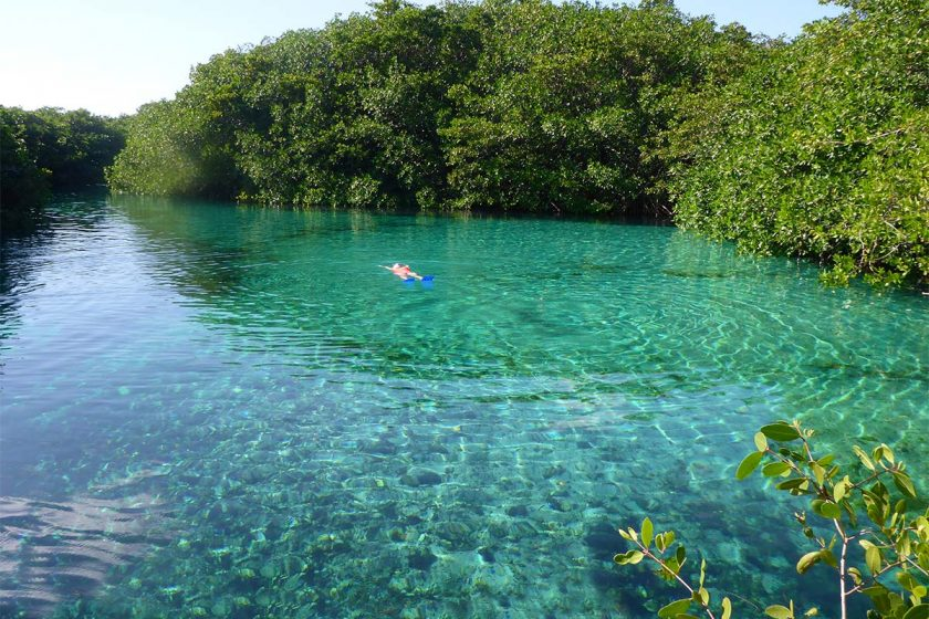 Cenotes: Natural Havens in Cancun and the Riviera Maya