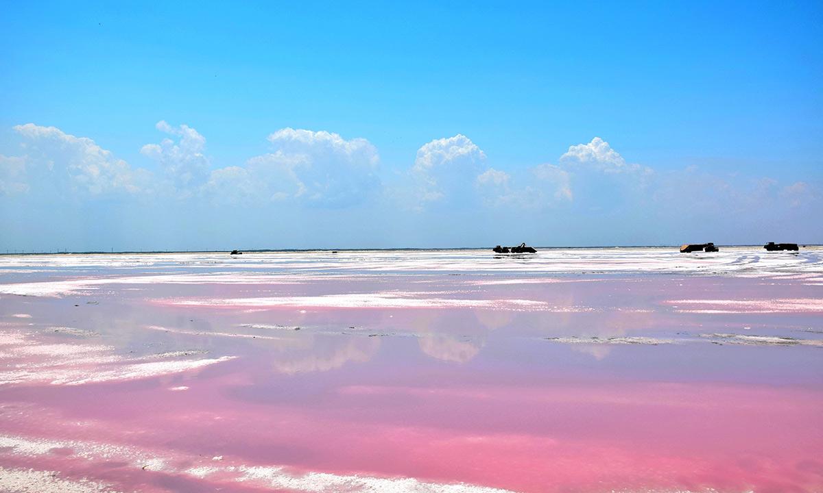 impressive pink lakes in yucatan