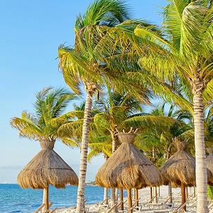 Villa Del Palmar Beach Resort Spa Facilities Aereas